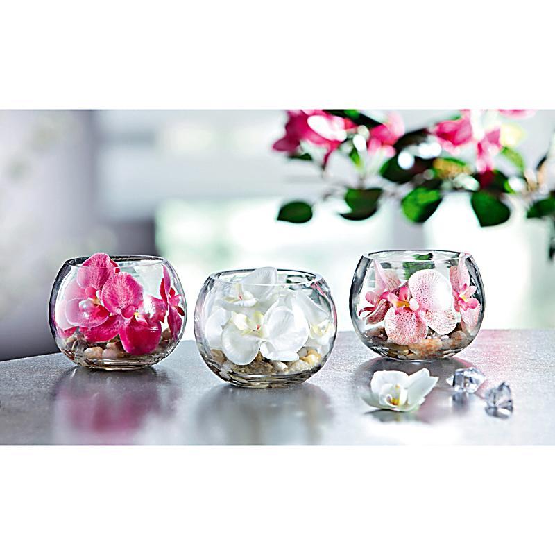 deko orchidee im glas 3er set jetzt bei bestellen. Black Bedroom Furniture Sets. Home Design Ideas