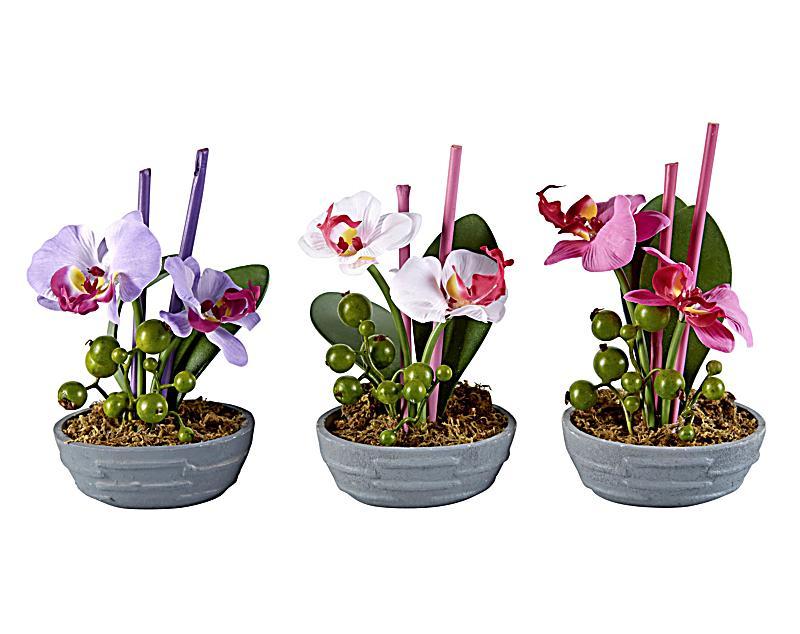 Deko orchideen mit led 3er set jetzt bei for Deko bestellen