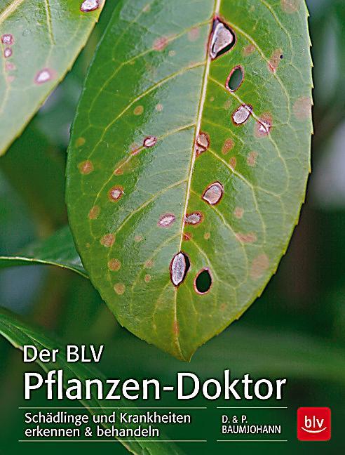 Der blv pflanzen doktor buch portofrei bei for Pflanzen bestellen schweiz