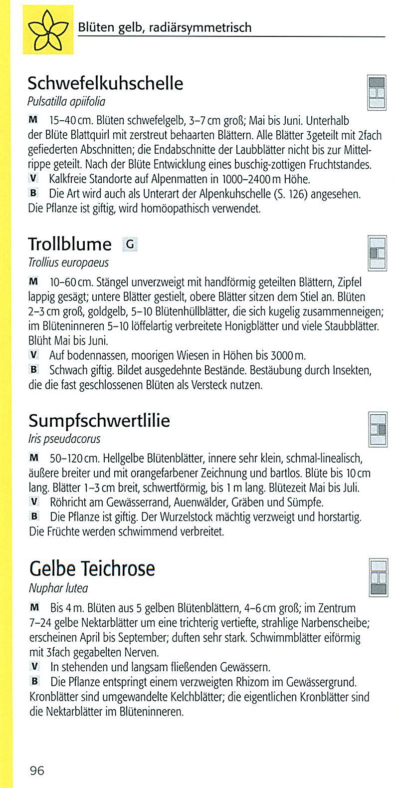 Groß Tierund Pflanzenzellen Zum Arbeitsblatt Zeitgenössisch - Super ...