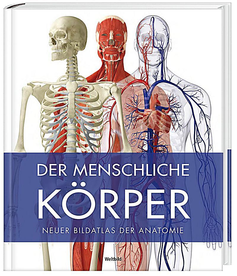 9783828944039 - Der menschliche Körper - rper: Modernste 3D-Grafiken ...