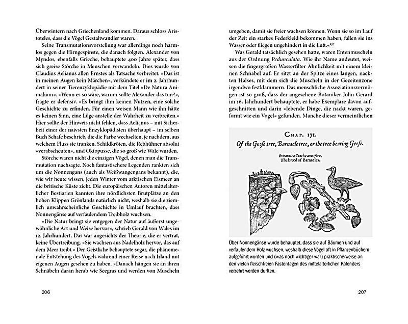 Großzügig Erstaunliche Anatomie Fakten Fotos - Menschliche Anatomie ...