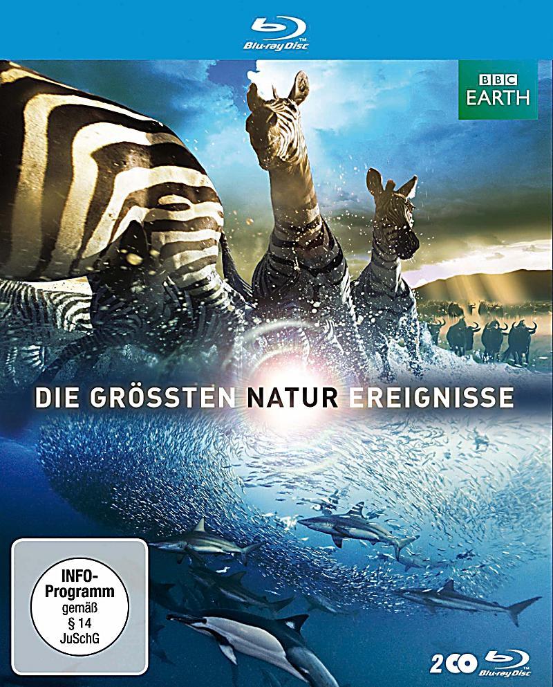 Various - Die Grössten Tonfilm Schlager - Golden Greats