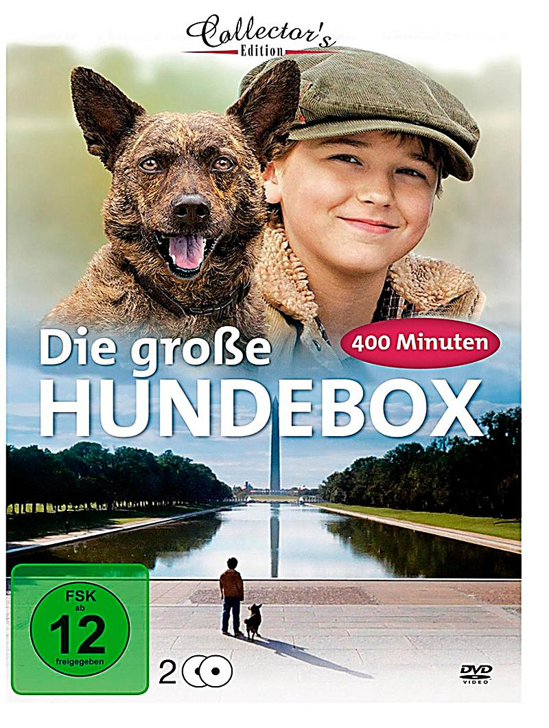 die grosse hundebox dvd jetzt bei online bestellen. Black Bedroom Furniture Sets. Home Design Ideas