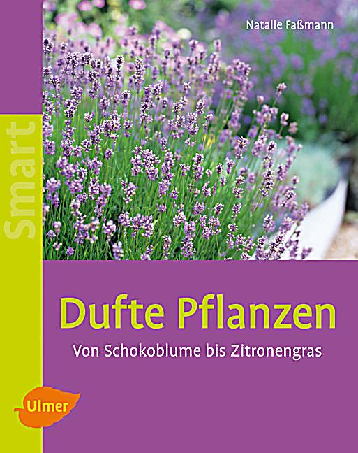 dufte pflanzen buch von natalie fa mann bei. Black Bedroom Furniture Sets. Home Design Ideas