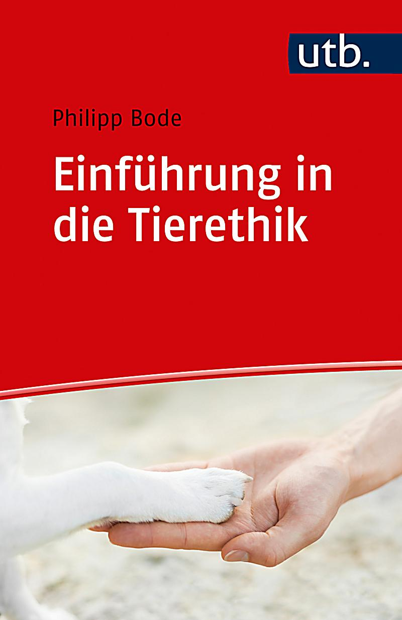 literature in vienna at the turn of the centuries continuities and discontinuities around 1900 and 2000 studies in german literature linguistics