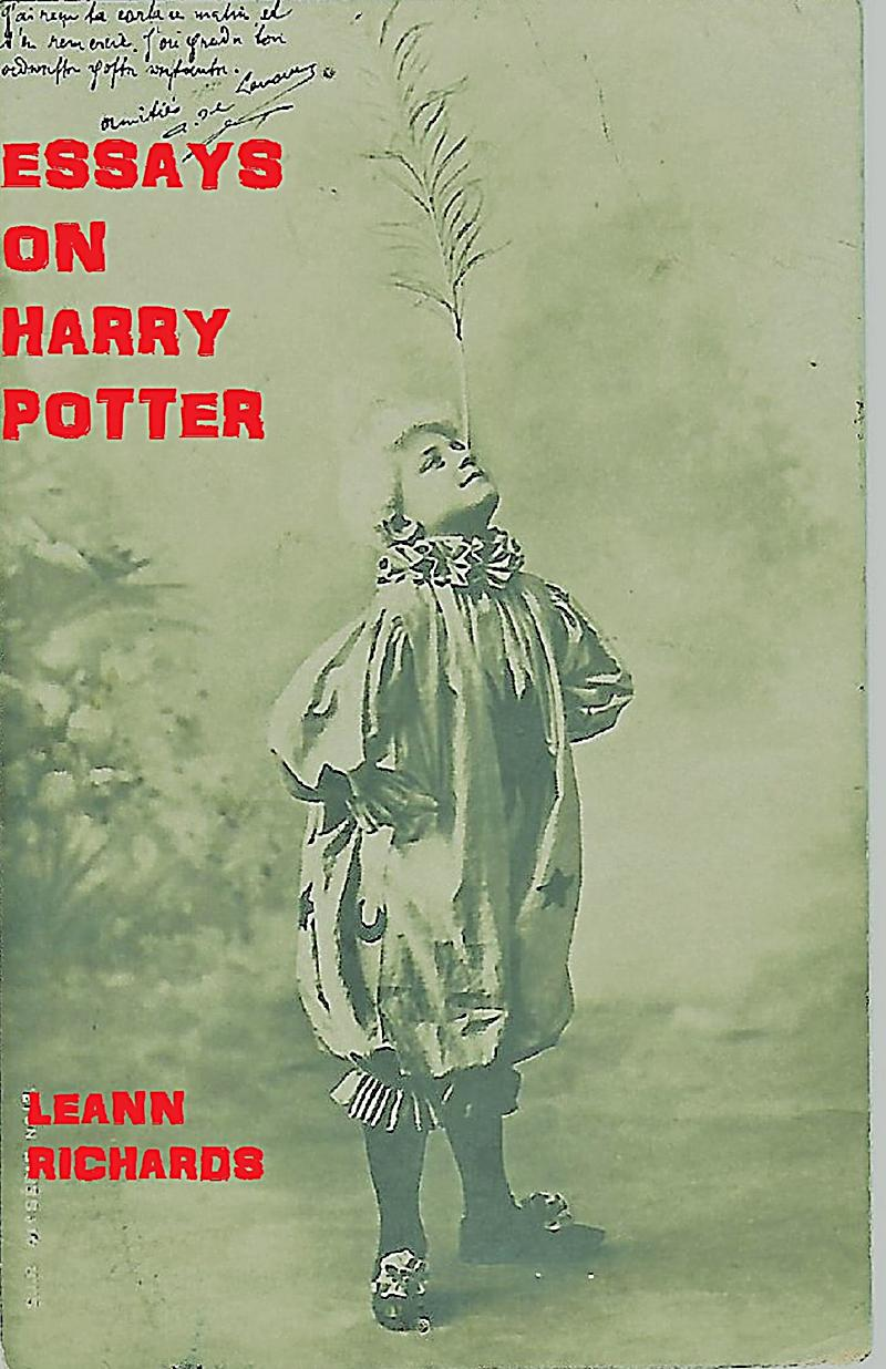 harry potter essays Harry potter has to spend a miserble summer with his only remaining family, the dursleys during a dinner party hosted by his uncle and aunt, harry is visited by dobby, a house-elf.