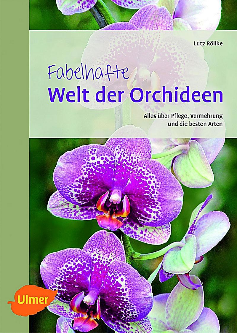fabelhafte welt der orchideen buch bei bestellen. Black Bedroom Furniture Sets. Home Design Ideas