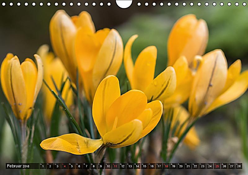 feng shui farben element erde wandkalender 2018 din a4 quer kalender bestellen. Black Bedroom Furniture Sets. Home Design Ideas