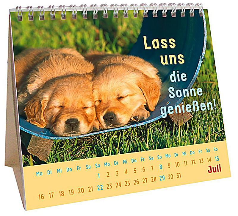 f r kleine hundefans 2018 kalender bei bestellen. Black Bedroom Furniture Sets. Home Design Ideas