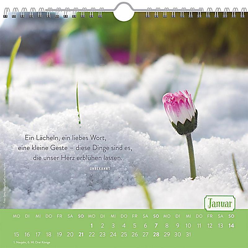 f r nette nachbarn 2018 kalender bei bestellen. Black Bedroom Furniture Sets. Home Design Ideas