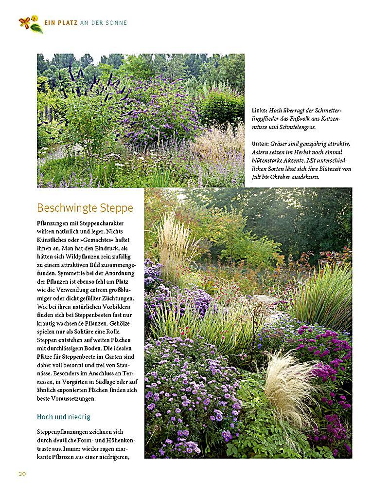 Terrassenbepflanzung Ideen Beete Gestaltung sweetmenuinfo 5148739 ...