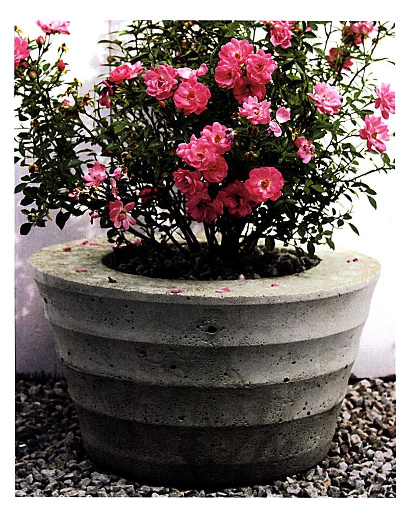 Gartendeko aus beton selbstgemacht portofrei weltbild for Neue gartendeko aus beton