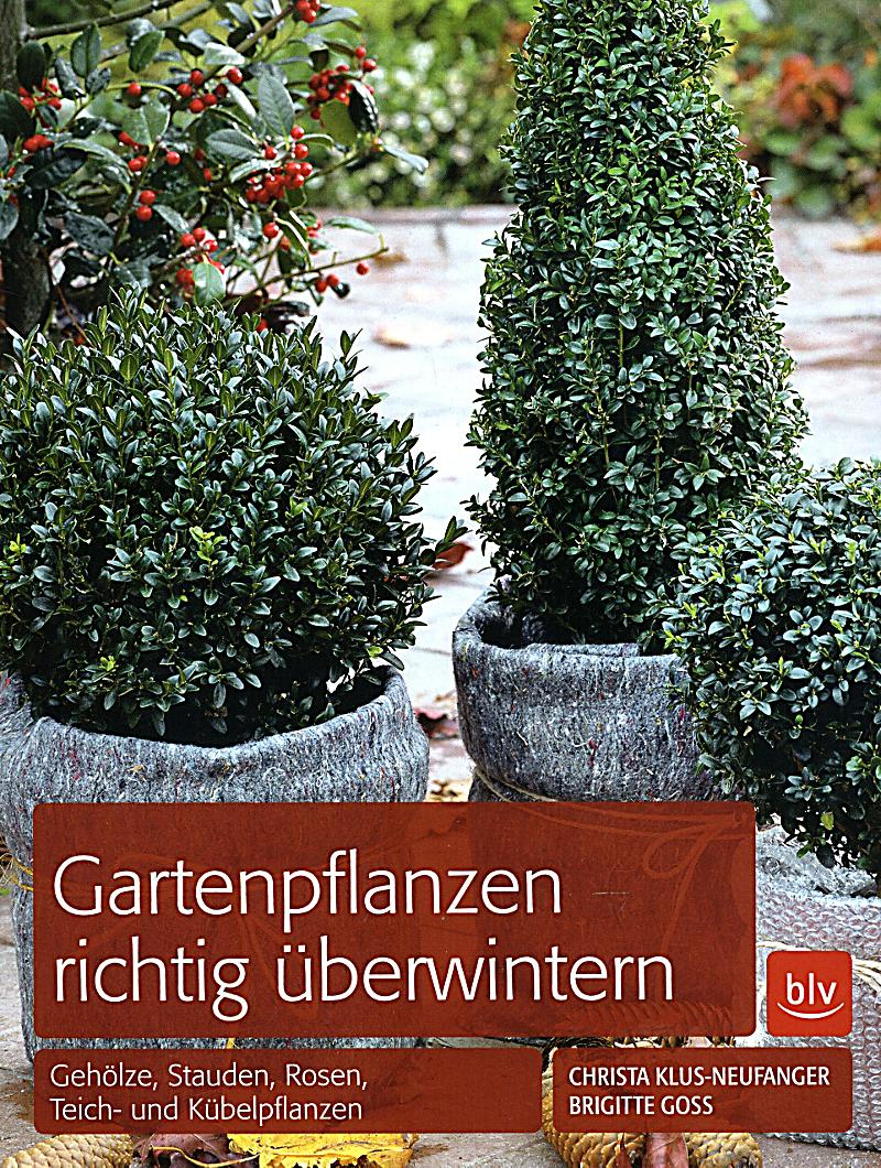 gartenpflanzen richtig berwintern buch bei. Black Bedroom Furniture Sets. Home Design Ideas