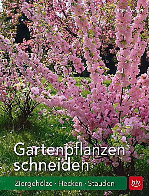 gartenpflanzen schneiden buch von rosa wolf portofrei. Black Bedroom Furniture Sets. Home Design Ideas