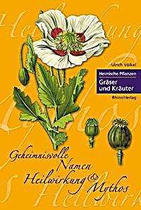 Heimische Pflanzen heimische pflanzen gräser und kräuter buch portofrei weltbild de