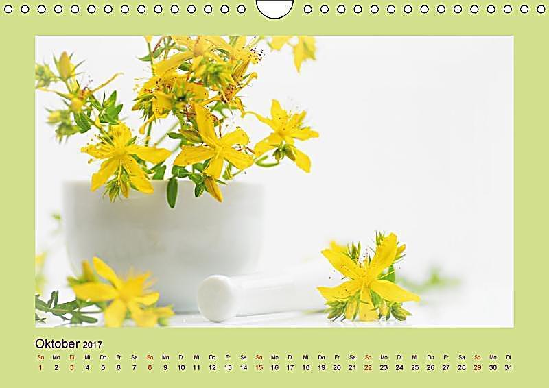 helfende kr uter aus dem garten wandkalender 2017 din a4 quer kalender bestellen. Black Bedroom Furniture Sets. Home Design Ideas