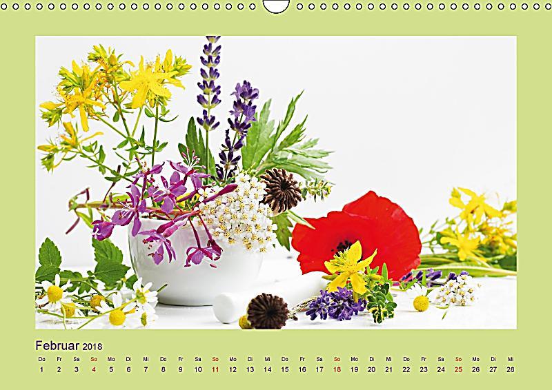 helfende kr uter aus dem garten wandkalender 2018 din a3 quer kalender bestellen. Black Bedroom Furniture Sets. Home Design Ideas