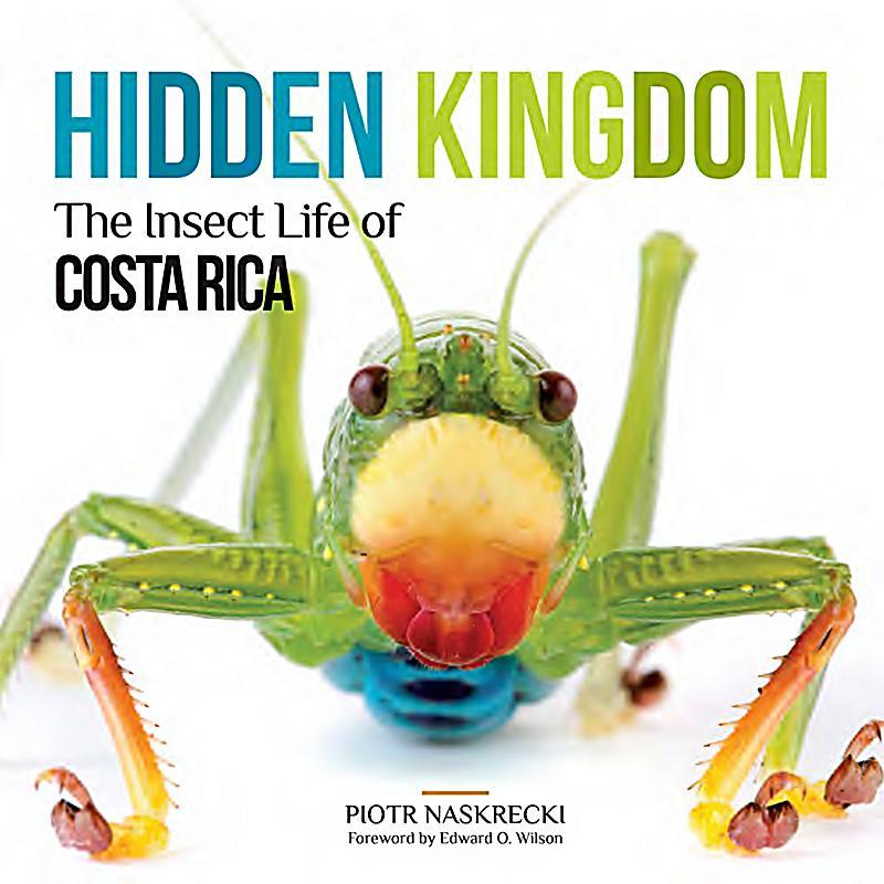 fairest the hidden kingdom pdf