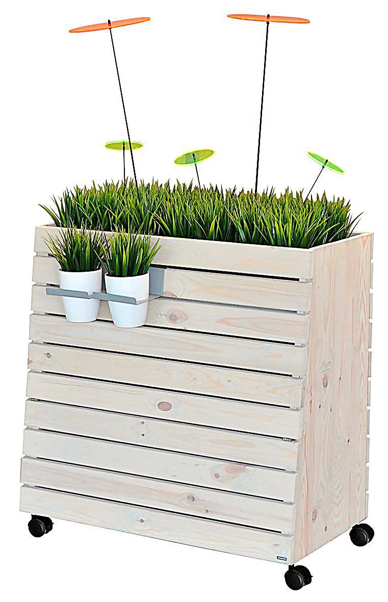 hochbeet bepflanzen buch interessante. Black Bedroom Furniture Sets. Home Design Ideas
