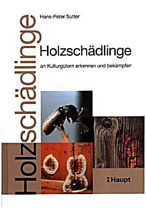 holzsch dlinge an kulturg tern erkennen und bek mpfen buch. Black Bedroom Furniture Sets. Home Design Ideas