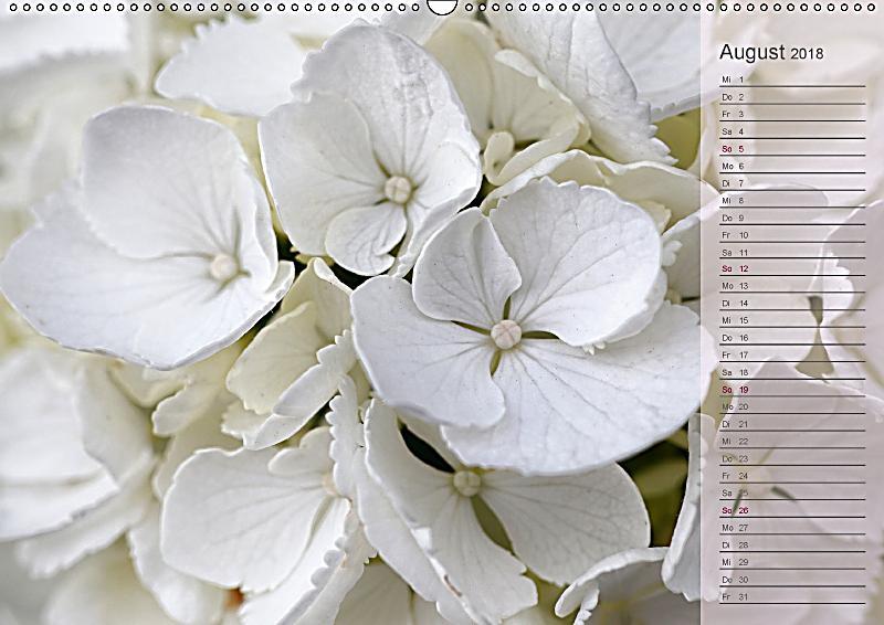 hortensien geburtstagskalender wandkalender 2018 din a2. Black Bedroom Furniture Sets. Home Design Ideas