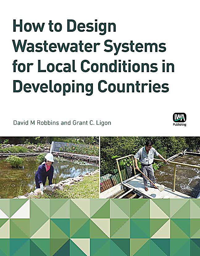 local government in developing countries pdf