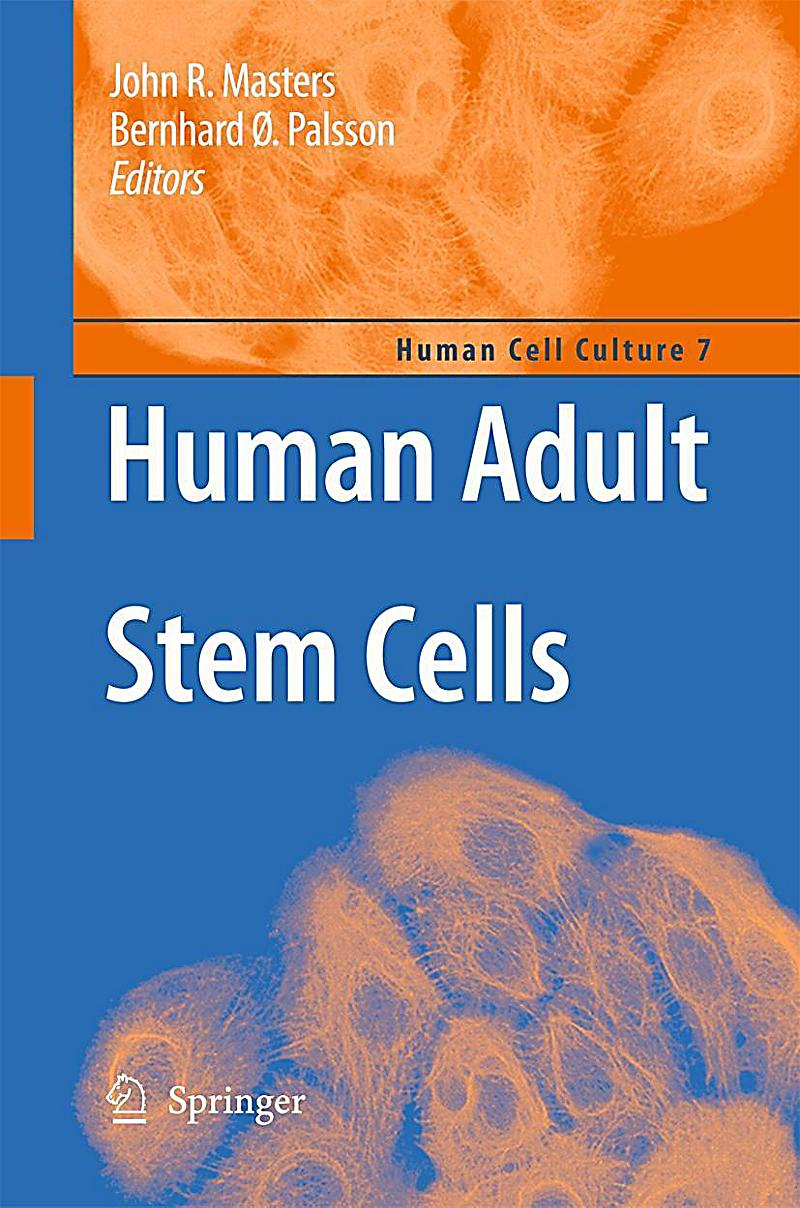 Human Adult Stem Cells 3
