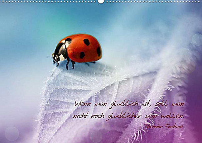 Ich W Nsche Dir Gl Ck Posterbuch Din A4 Quer Buch