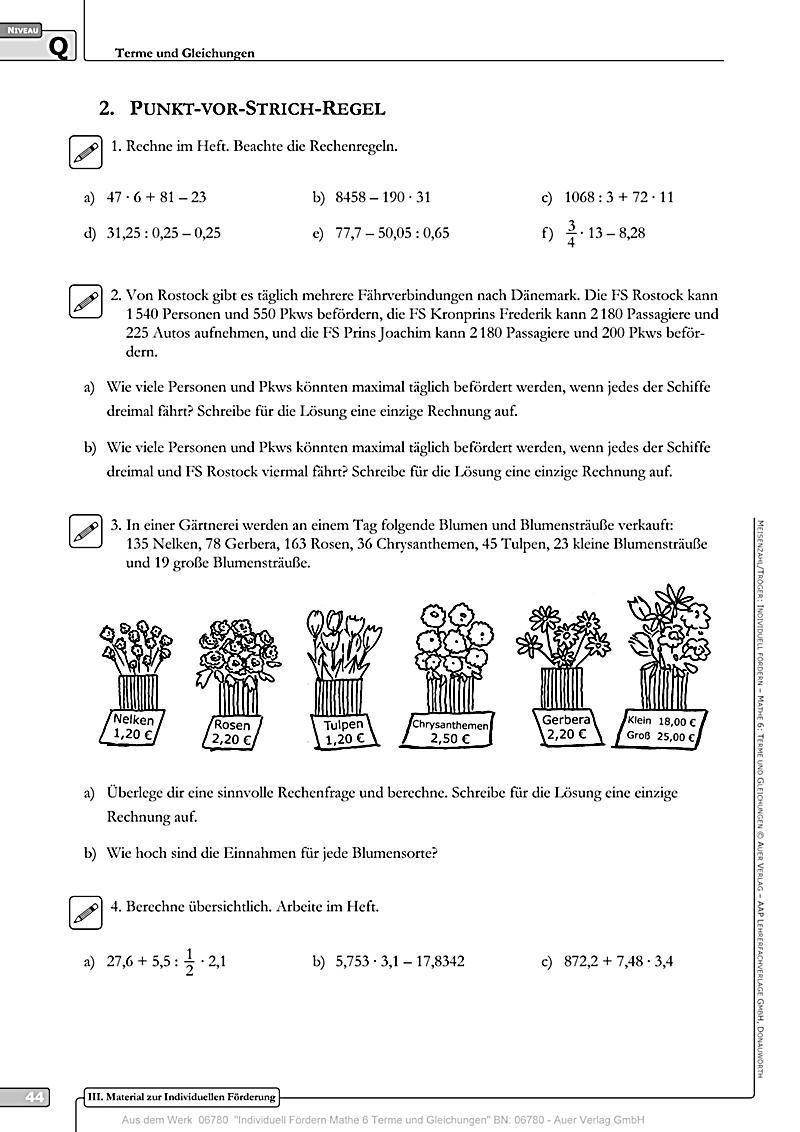 Individuell fördern Mathe: Mathe 6, Terme und Gleichungen, m. CD-ROM ...