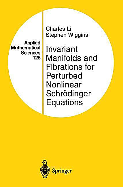 shop Finite Elements: Theory and Application Proceedings of the