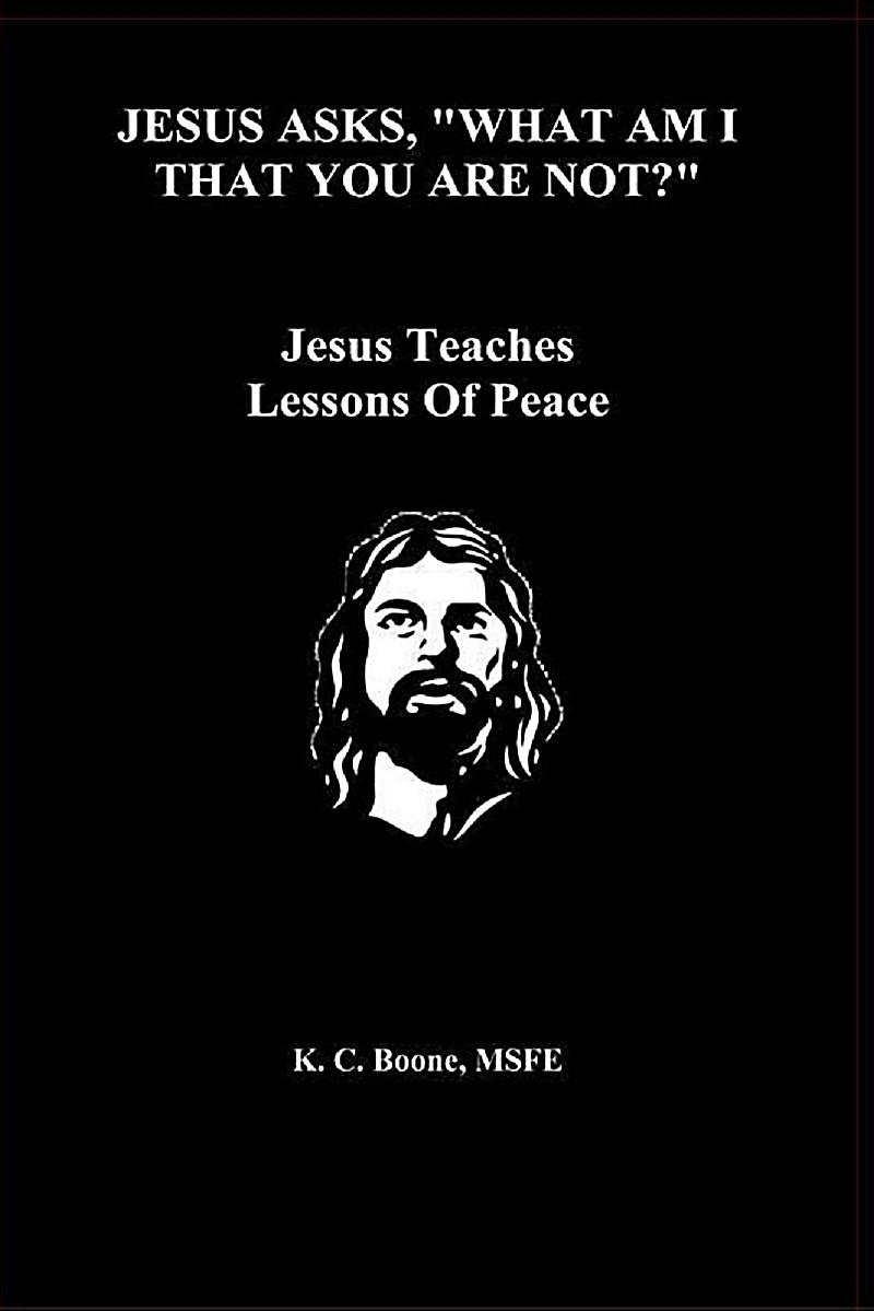 ebook A Shorter Commentary on