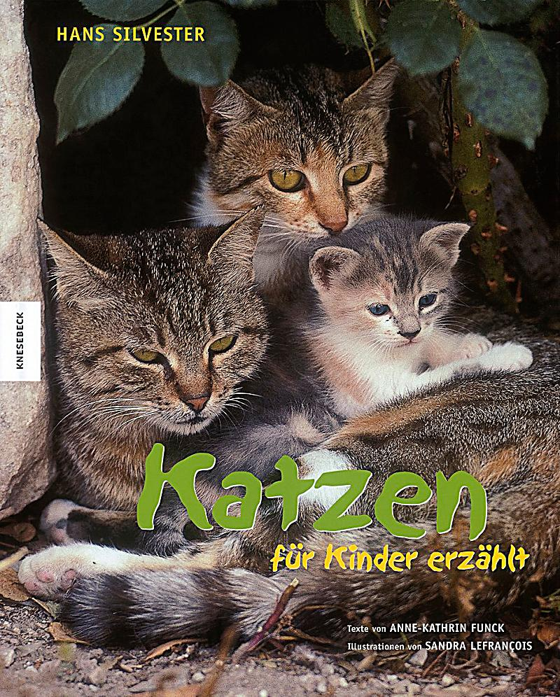 katzen f r kinder erz hlt buch portofrei bei. Black Bedroom Furniture Sets. Home Design Ideas