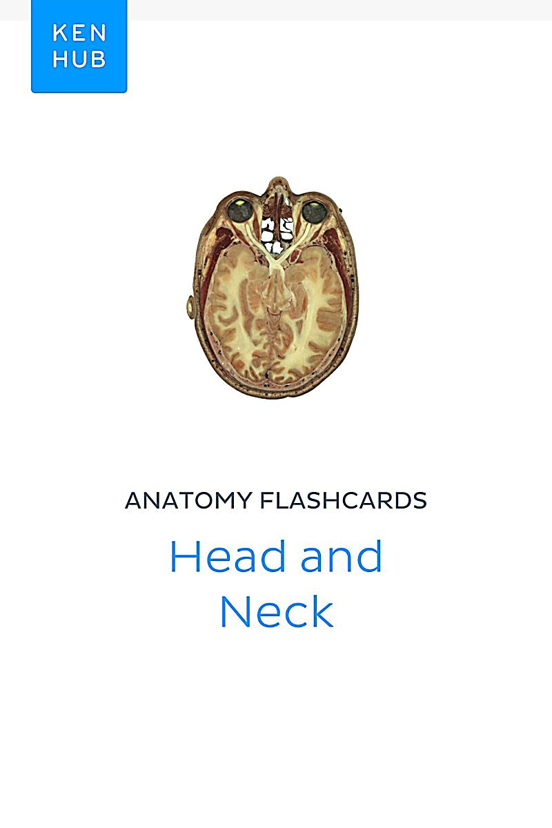 Flashcards for anatomy
