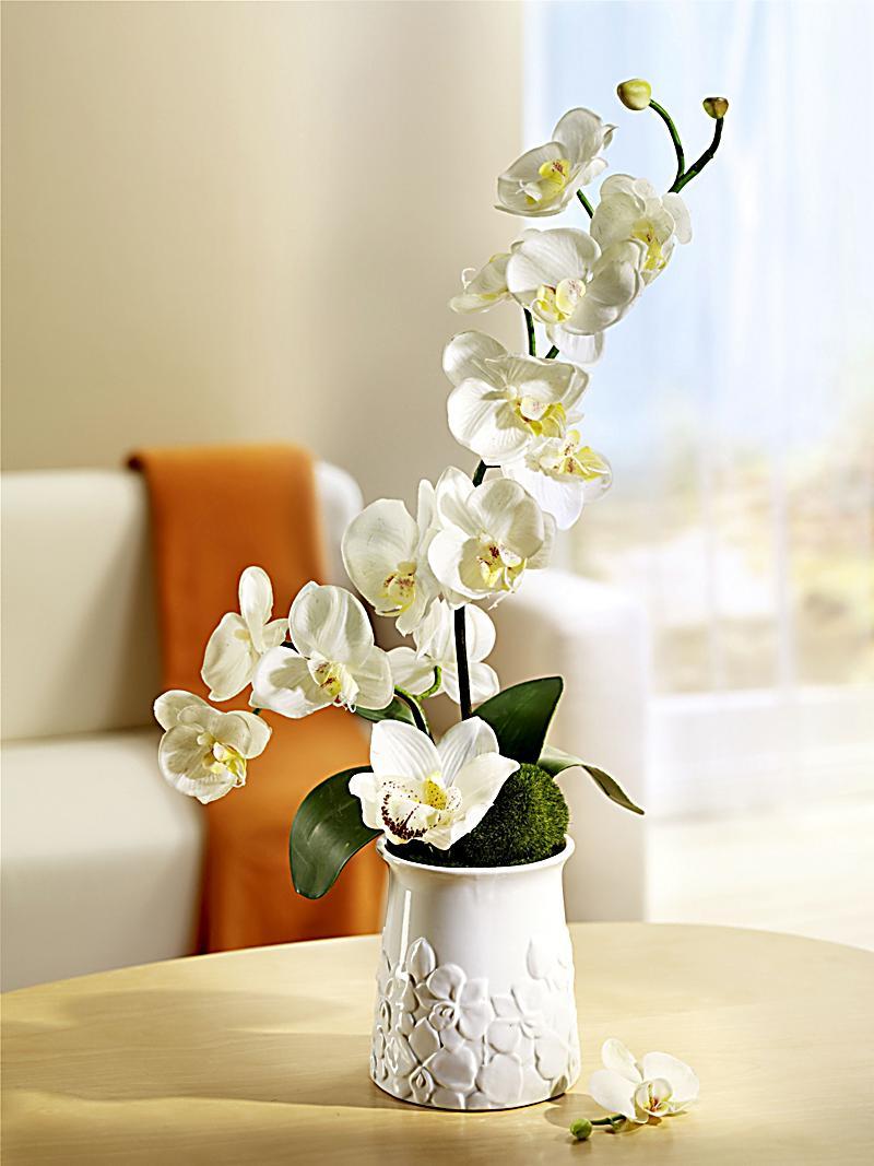 kunst orchidee im keramiktopf jetzt bei bestellen. Black Bedroom Furniture Sets. Home Design Ideas