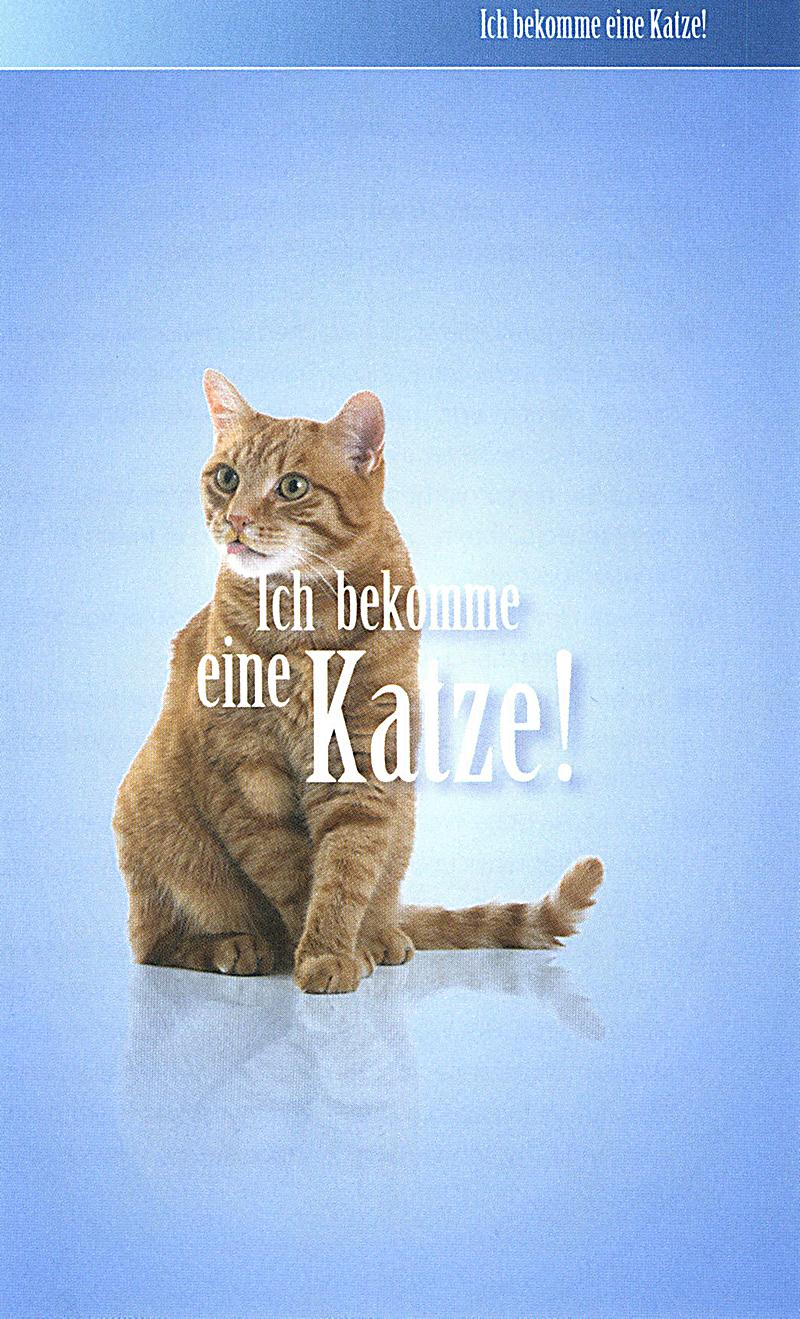 buch katze:
