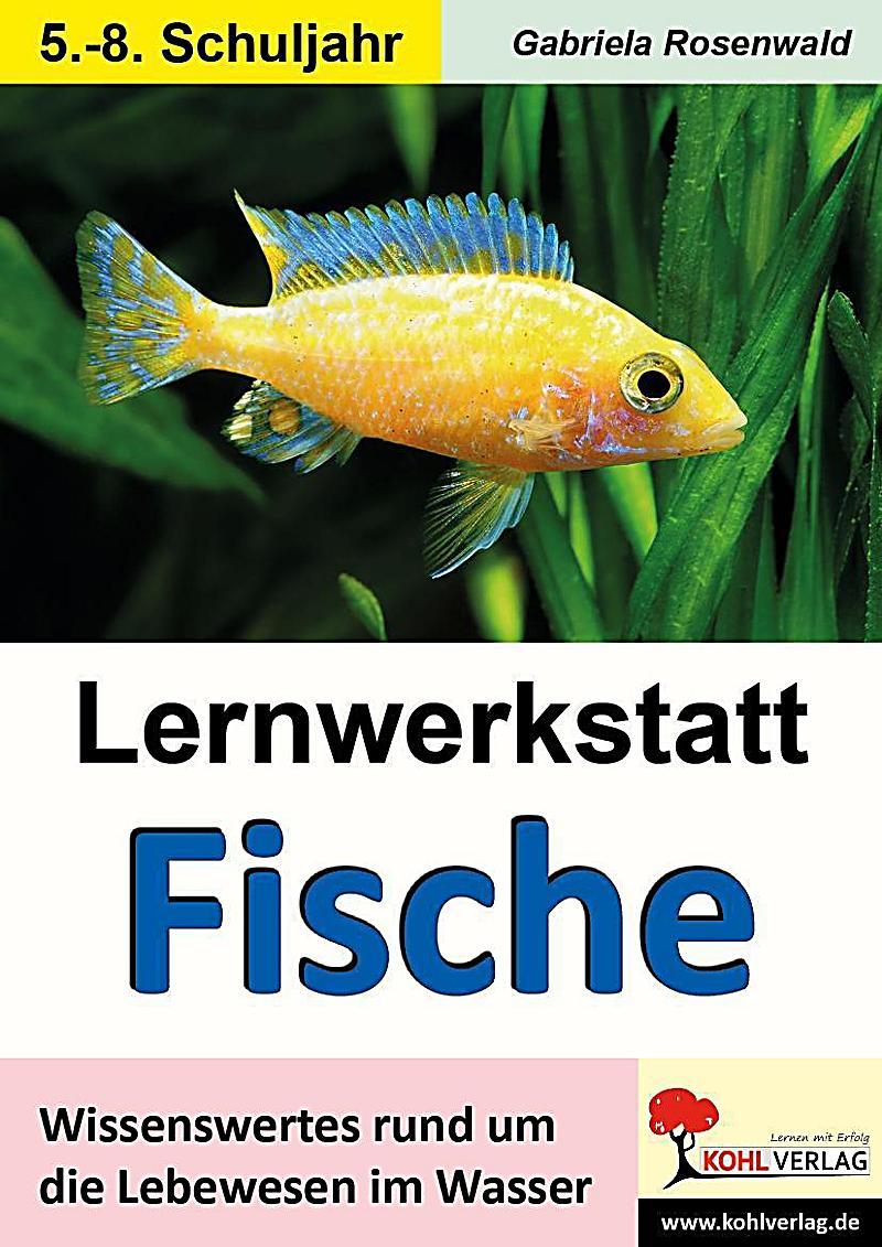 Arbeitsblatt Fortpflanzung Fische : Lernwerkstatt fische buch portofrei bei weltbild bestellen
