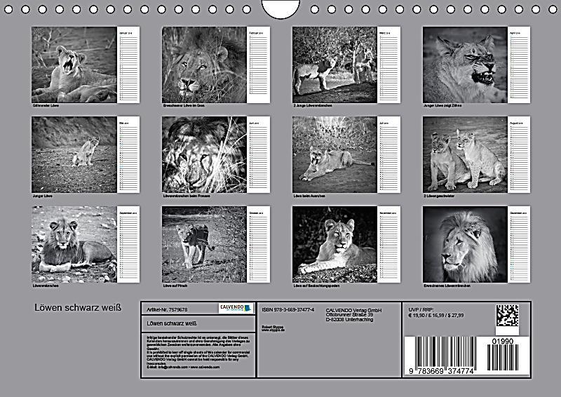 Löwen schwarz weiß Wandkalender 2018 DIN A4 quer - Kalender bestellen