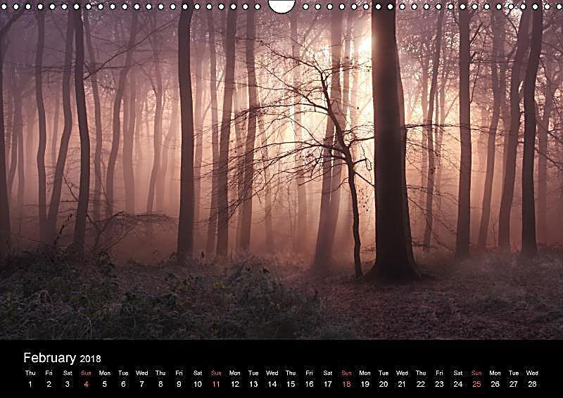 Calendar Woodlands : Magical woodlands wall calendar din a landscape