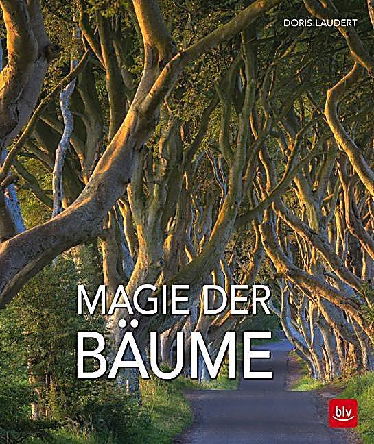 magie der b ume buch von doris laudert portofrei bei. Black Bedroom Furniture Sets. Home Design Ideas