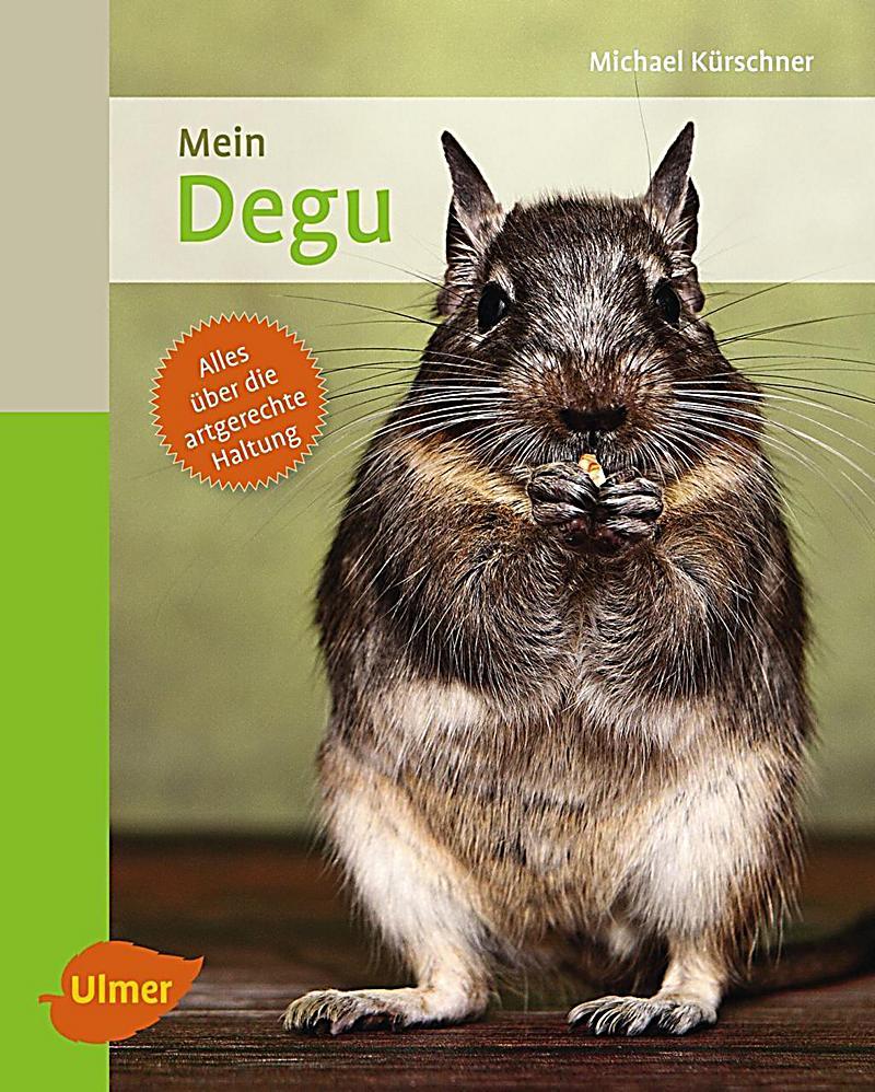 Mein Degu zu Hause Buch jetzt bei Weltbild online bestellen