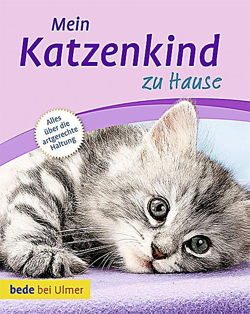 Mein Katzenkind zu Hause Buch bei Weltbild online bestellen