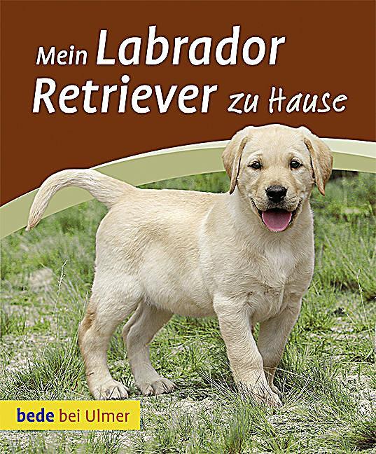 Mein Labrador Retriever zu Hause Buch portofrei bei