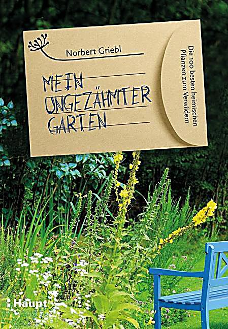 mein ungez hmter garten buch portofrei bei. Black Bedroom Furniture Sets. Home Design Ideas