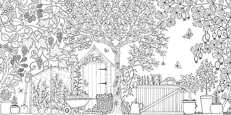 Mein verzauberter garten buch portofrei bei bestellen - Garten zeichnen ...