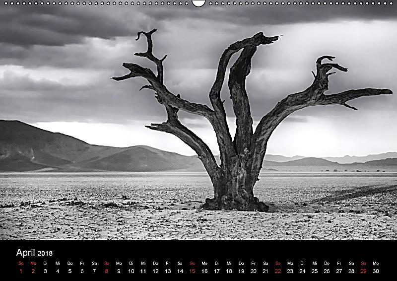 namibias b ume in schwarzwei wandkalender 2018 din a2 quer kalender bestellen. Black Bedroom Furniture Sets. Home Design Ideas