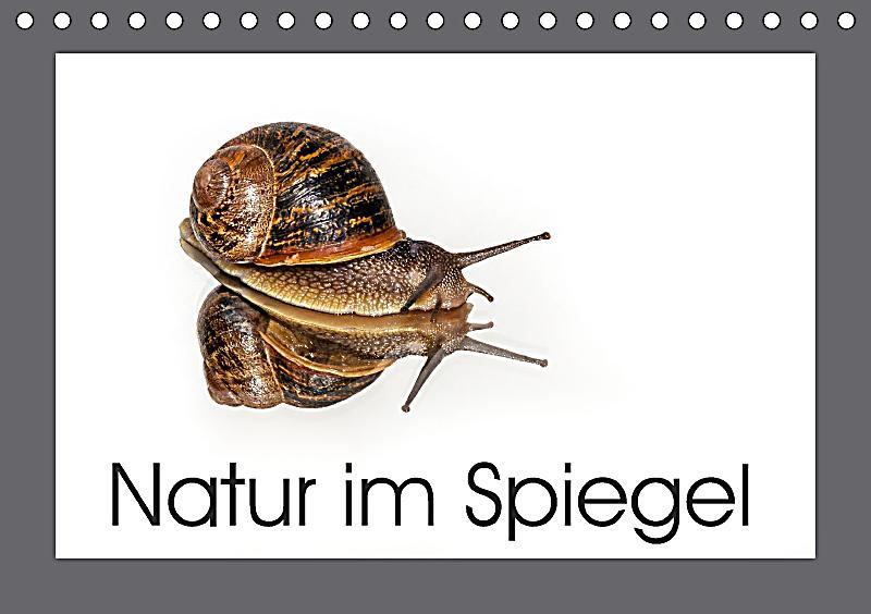 Natur im spiegel tischkalender 2018 din a5 quer dieser for Spiegel 5 2018