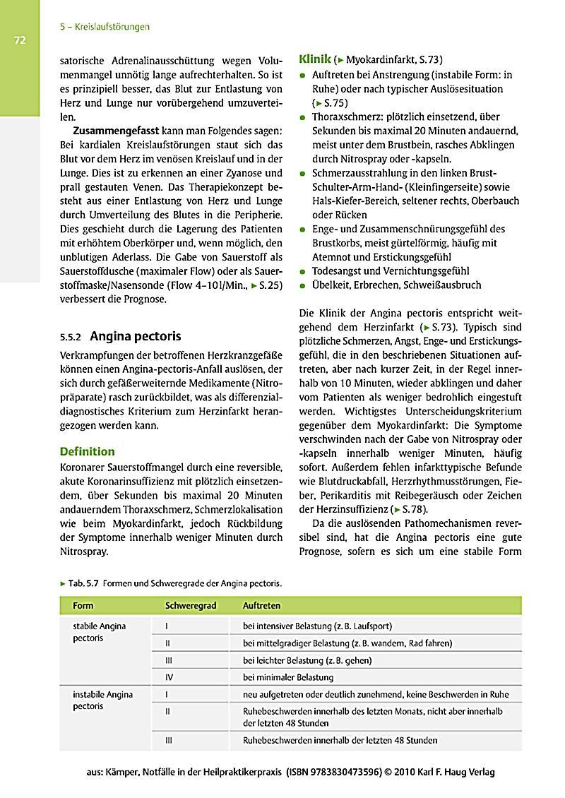 Internationalisierung in frühen Unternehmensphasen: Eine empirische Analyse der
