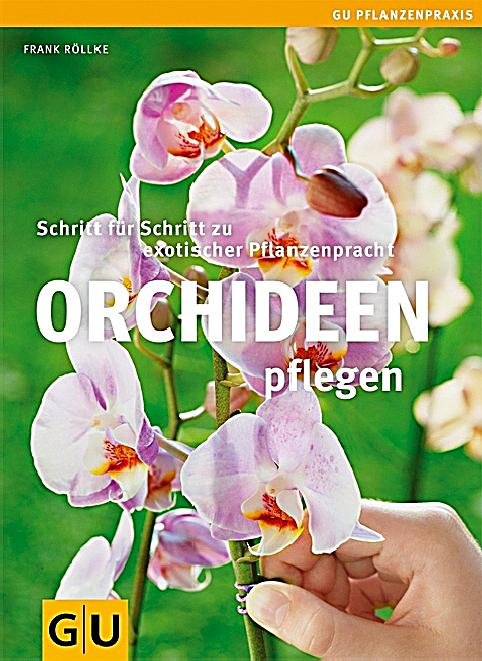 orchideen pflegen buch von frank r llke bei. Black Bedroom Furniture Sets. Home Design Ideas