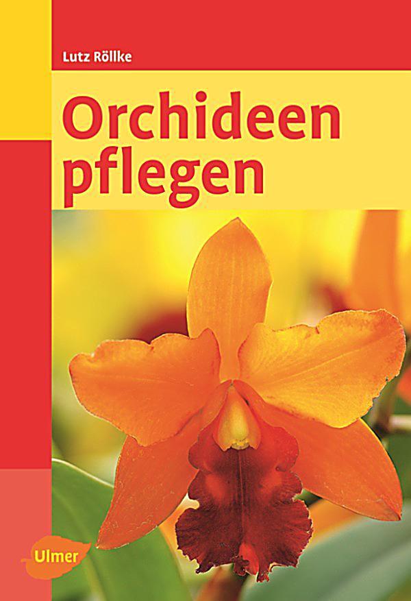 orchideen pflegen ebook jetzt bei als download. Black Bedroom Furniture Sets. Home Design Ideas
